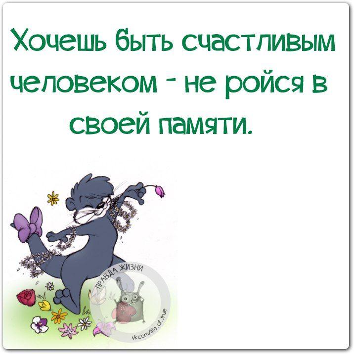 https://cs7063.vk.me/c540107/v540107123/14922/mGN-Yh7X3MA.jpg