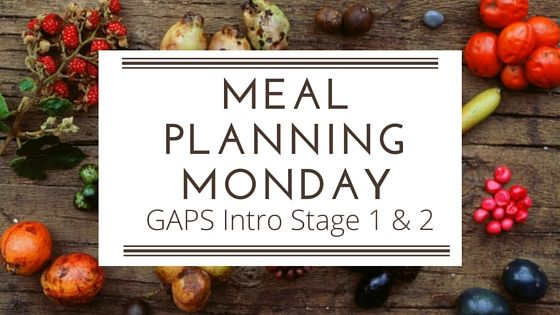 Recipe ideas for Stages 1 & 2 of the GAPS Intro Diet