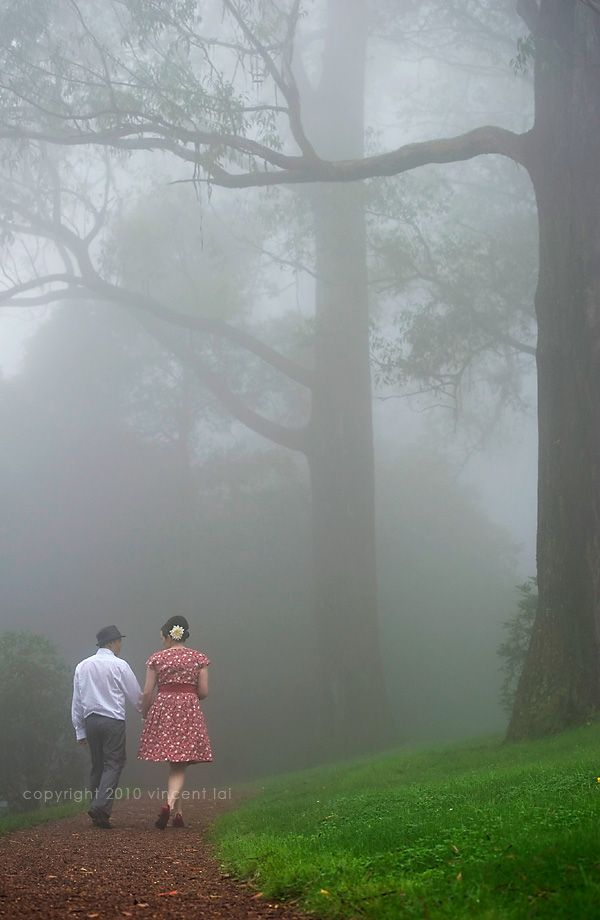 into the Jungle on a misty day- Wedding at Mount Tomah Botanical Gardens