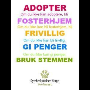 Vi kan alle gjøre noe for mer informasjon om adopsjon, fosterhjem, å være frivillig eller andre måter å støtte oss på, sjekk ut vår hjemmeside www.dnvestfinnmark.net :) #dnvf #dyrebeskyttelsen #frivillig #adopter #fosterhjem #donasjon #brukstemmen #finnmark #alta #dyrevern #dyr #charity