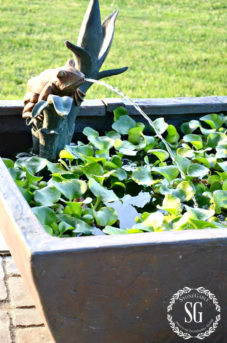 a patio pond and a pond giveaway: diy patio pond