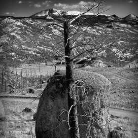 1000+ images about My Photography on Pinterest | Bill O'brien, Stones ...