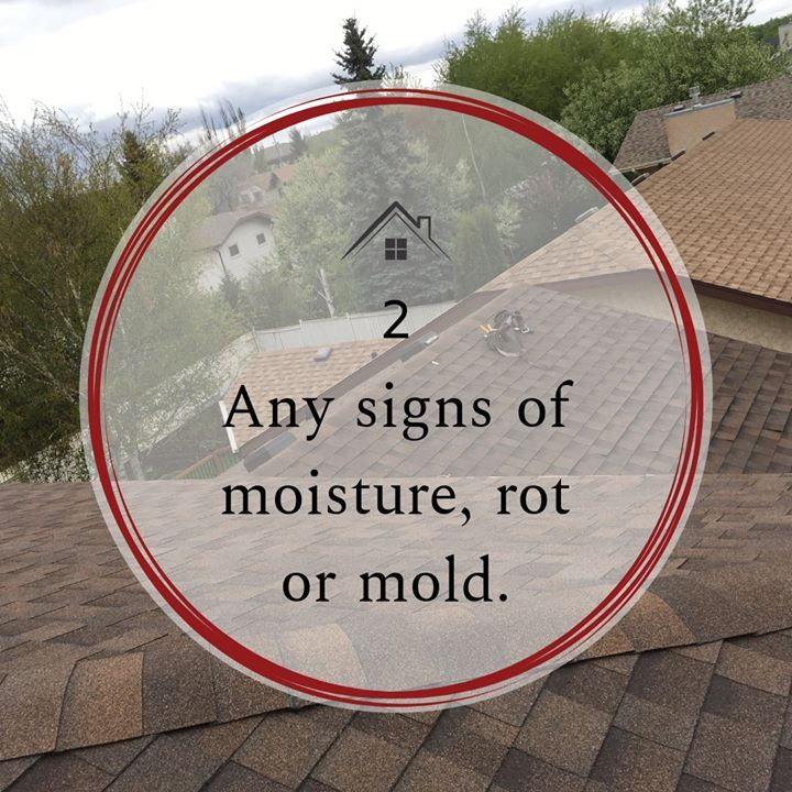 Warning Signs You Need A New Roof Any Signs Of Moisture Rot Or Mold A Wet Spot May Not Be Directly Under The Damaged Shingl Pitch Perfect Wet Spot Roofing
