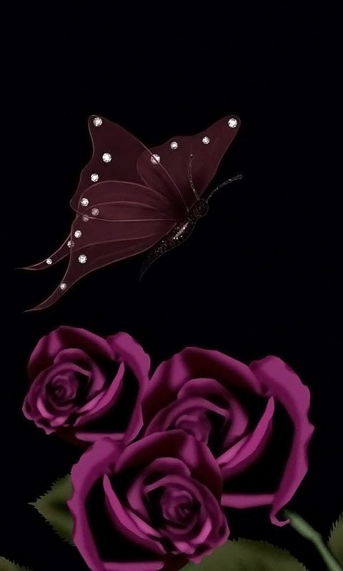 Download 480x800 Dark Roses And Butterfly Cell Phone Wallpaper Category Art