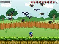 Защити сад ёжика Соника от нападения ворон и летучих мышей, сбивай их яблоками, но и уворачиваться не забывай от их воздушных атак.