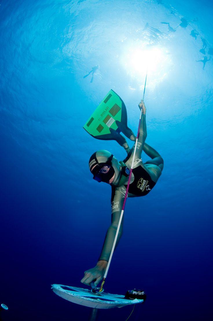 free diving - Bing Images