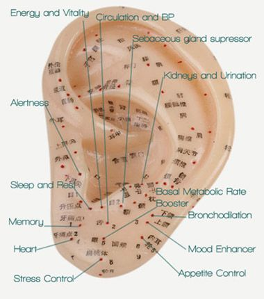 33 best ear acupressure images on Pinterest | Acupuncture ...