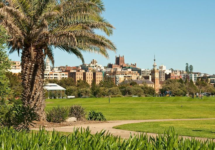 View of Customs House & Christ Church Cathedral from the park in Newcastle, NSW, Australia, Roberto Portolese