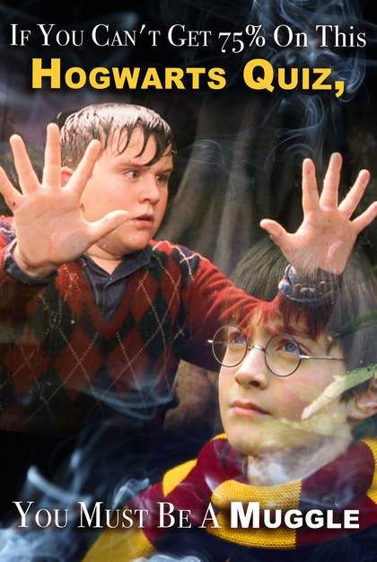 If You Can't Get 75% On This Hogwarts Quiz, You Must Be A