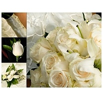 Wedding Collection White 17 Pc Sam 39 S Club Bouquet Toss And Weddings