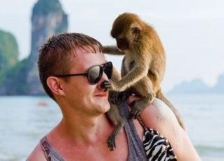 L'HOMME N'EST-IL QU'UN SINGE PLUS ÉVOLUÉ QUE LES AUTRES ? Les plus évolués des singes montrent des aptitudes étonnantes, mais cela ne suffit pas à légitimer une conception simplement biologique de l'origine de l'homme. L'évolution de l'homme comporte des énigmes insolubles, et l'homme est plus que ce qu'il peut et pourra jamais savoir de lui-même.