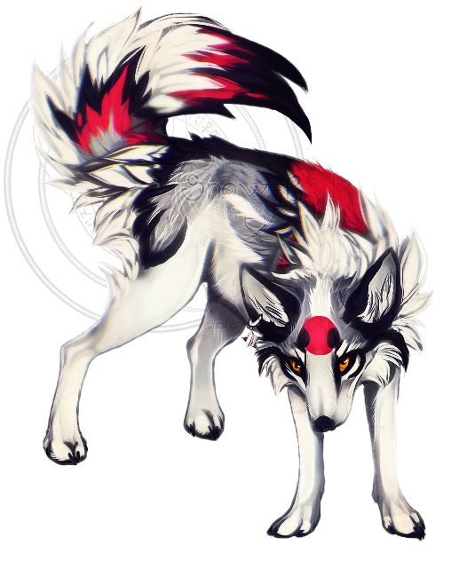 anime white and red wolf wwwpixsharkcom images