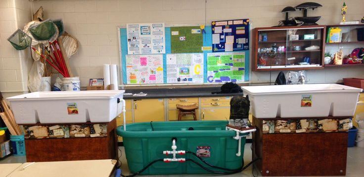 Here's one of our STEM Food Growing Systems at Danbury High School in Connecticut. We can't wait to get photos of a producing STEM System with excited students standing around it! Read all about STEM Food Growing Systems in our February 2016 Newsletter at: http://myemail.constantcontact.com/Aquaponics-USA-World-Newsletter--February-is-Dedicated-to-Aquaponics-USA-.html?soid=1112251298842&aid=g74okU7L_QU