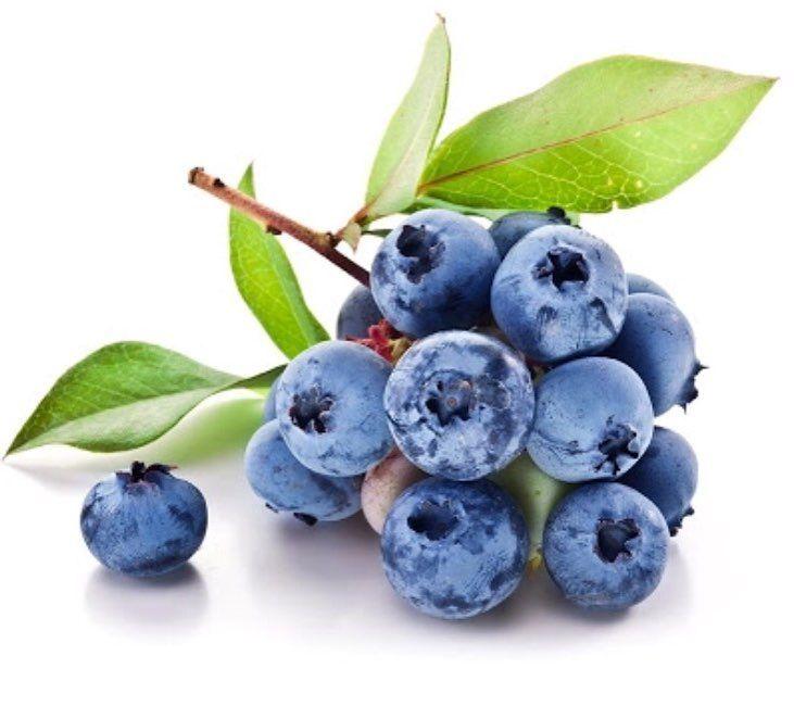 Günaydın iyi haftasonları  YABAN MERSİNİ tüm sebzeler meyveler ve bitkiler arasında antioksidan kapasitesi en yüksek besin maddesi olması ve vücudumuzda bulunan serbest radikalleri dengeliyor. Serbest radikallerin dengelenmesi ve çoğalmalarının engellenmesi son derece önemli çünkü kontrol altına alınamayan durmadan çoğalan ve hücre yapısını tahrip eden serbest radikaller vücutta oksidatif strese yol açıyor. Oksidatif stres ise kanser kalp hastalıkları diyabet ve diyabetin neden olduğu sağlık…