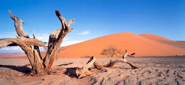 S. 761428], Dune 45, Namib desert, Namib-Naukluft-Nationalpark, Namib Wüste