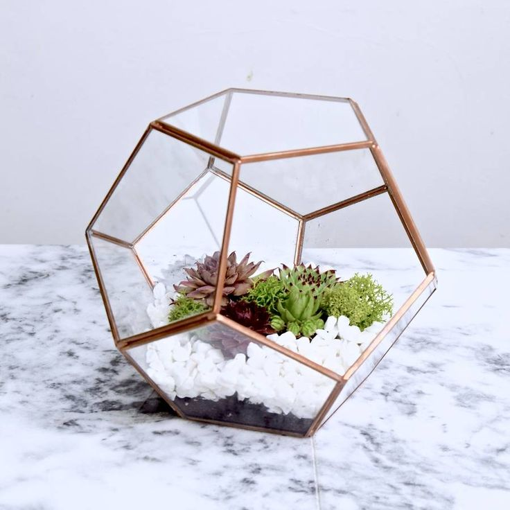 Handmade copper pentagonal glass and soldered greenhouse for succulents, cacti or other decorative plants or items in copper shaded metalChoose to purchase the terrarium either with our without a succulent planting set, which consists of: 4 mini succulents (if not specified on purchase, these will be chosen at random), nutrient soil, activated charcoal, decorative white gravel stone, decorative Islandic green moss, instructions for planting, watering and maintenance. This comes in a seperate…