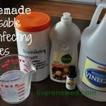 31 Days to Green Clean: Homemade Disinfecting Wipes - Updated!