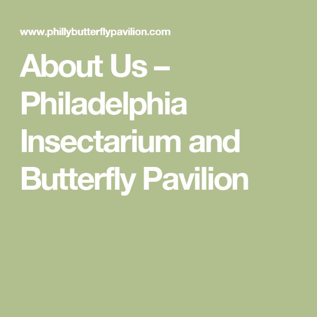 About Us – Philadelphia Insectarium and Butterfly Pavilion