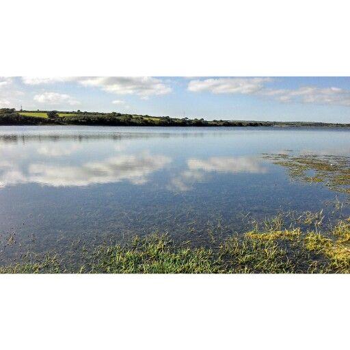 Stithians lake #Stithians #Cornwall ⓙⓔⓢⓢⓘⓒⓐ ⓜⓘⓒⓚⓘⓢⓗ
