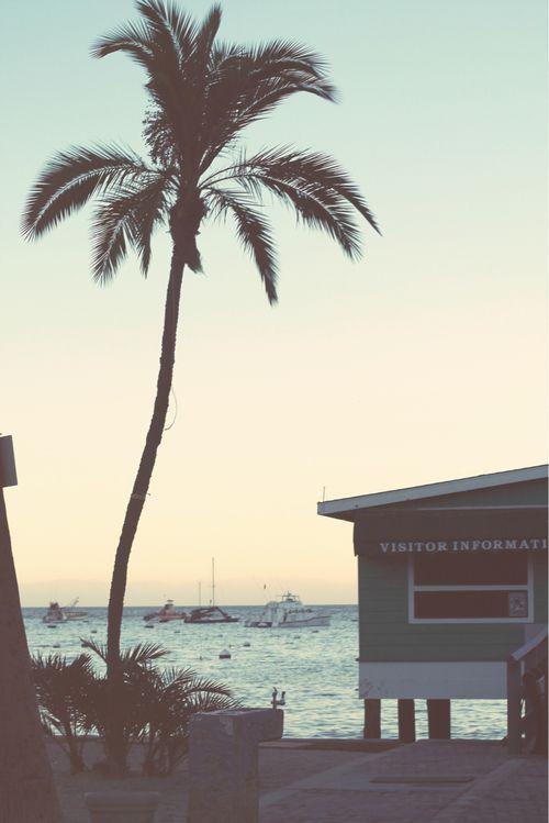 ☼ Life's a beach, enjoy the waves ☼