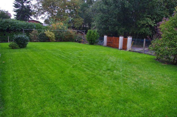 Regarnissage de pelouse http://www.habitatpresto.com/chantier/750-chantier-mars-2015 #jardin #gazon #pelouse
