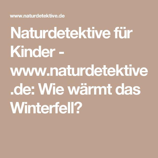 Naturdetektive für Kinder - www.naturdetektive.de: Wie wärmt das Winterfell?