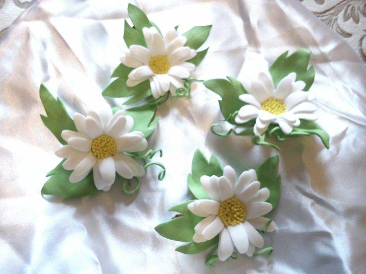 fom daisys