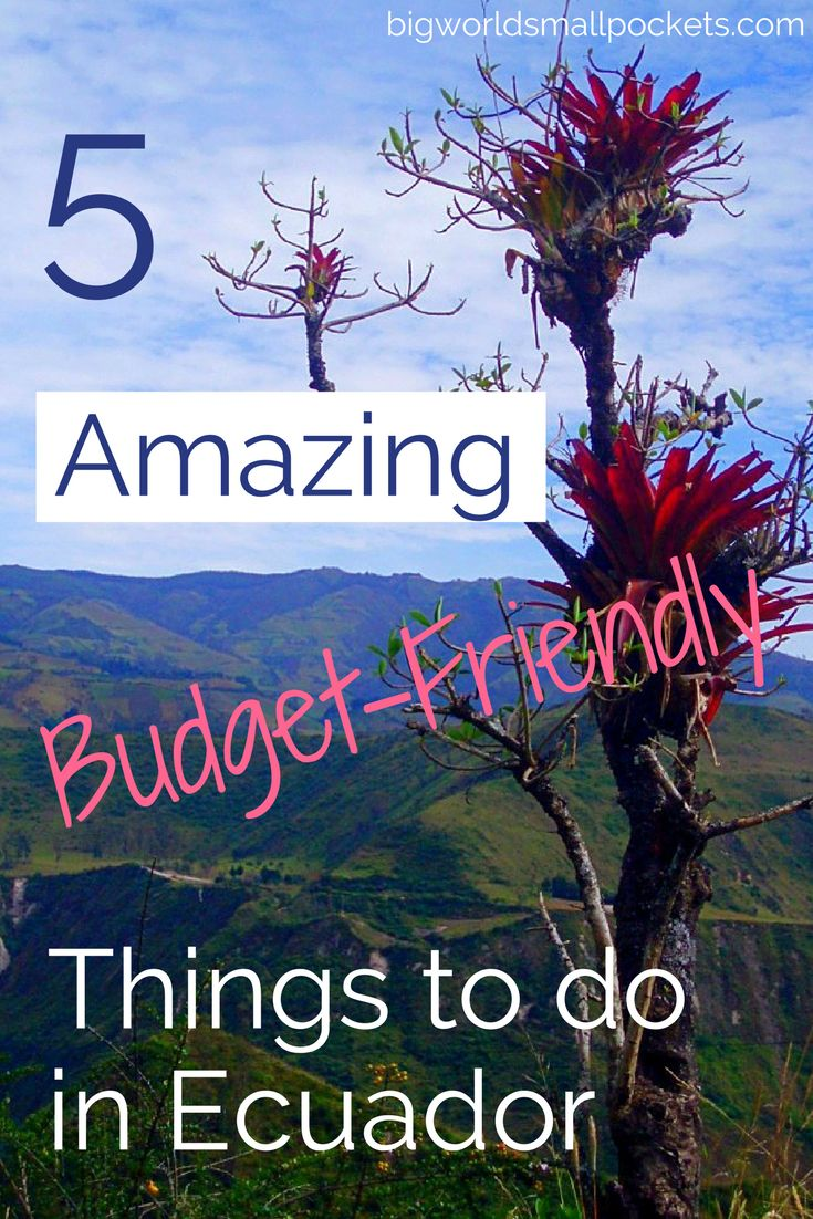 5 Amazing & Budget-Friendly Things to Do in Ecuador {Big World Small Pockets}