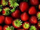 The University of Arkansas System Division of Agriculture in cooperation with the National Strawberry Sustainability Initiative are seeking input from growers as the multi-state research program.....