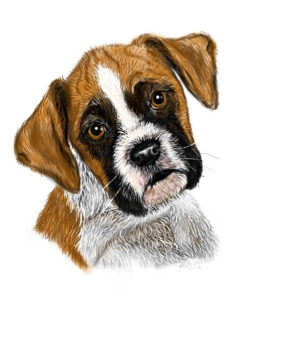 Boxer Puppy Print Etsy Boxer Puppy Boxer Puppies Puppy Prints