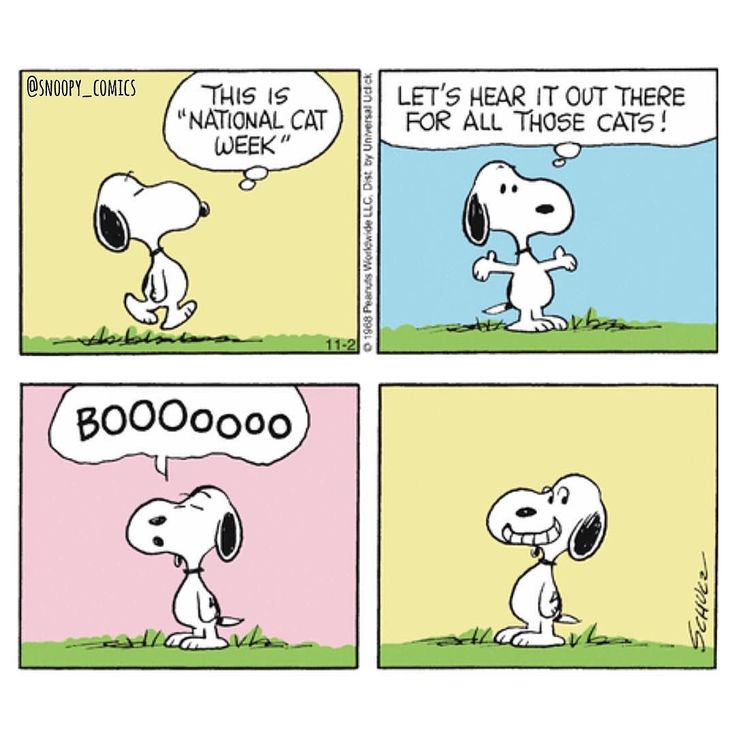 Shared on Instagram by snoopy_comics