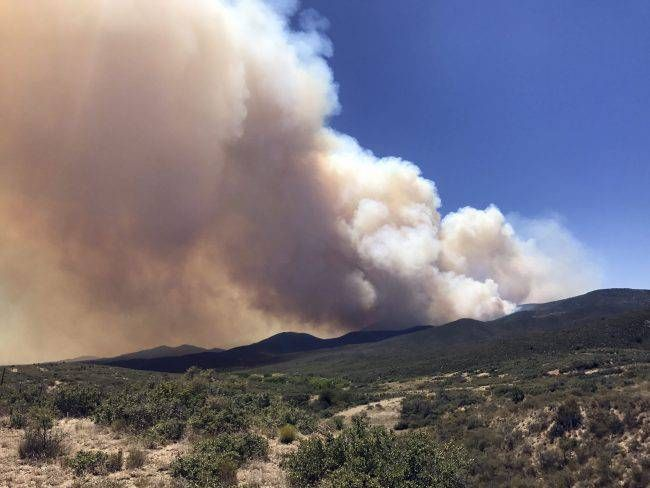 Arizona man arrested for flying drone over wildfire, hindering firefighting aircraft https://tmbw.news/arizona-man-arrested-for-flying-drone-over-wildfire-hindering-firefighting-aircraft  A man accused of flying a drone over a major Arizona wildfire has been arrested, with authorities saying he interrupted firefighting efforts on a blaze that has forced thousands of people from their homes.The Yavapai County Sheriff's Office said Saturday that 54-year-old Gene Alan Carpenter of Prescott…