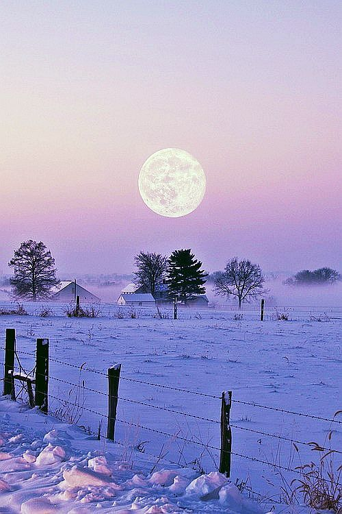 Winter Moon shining in the country