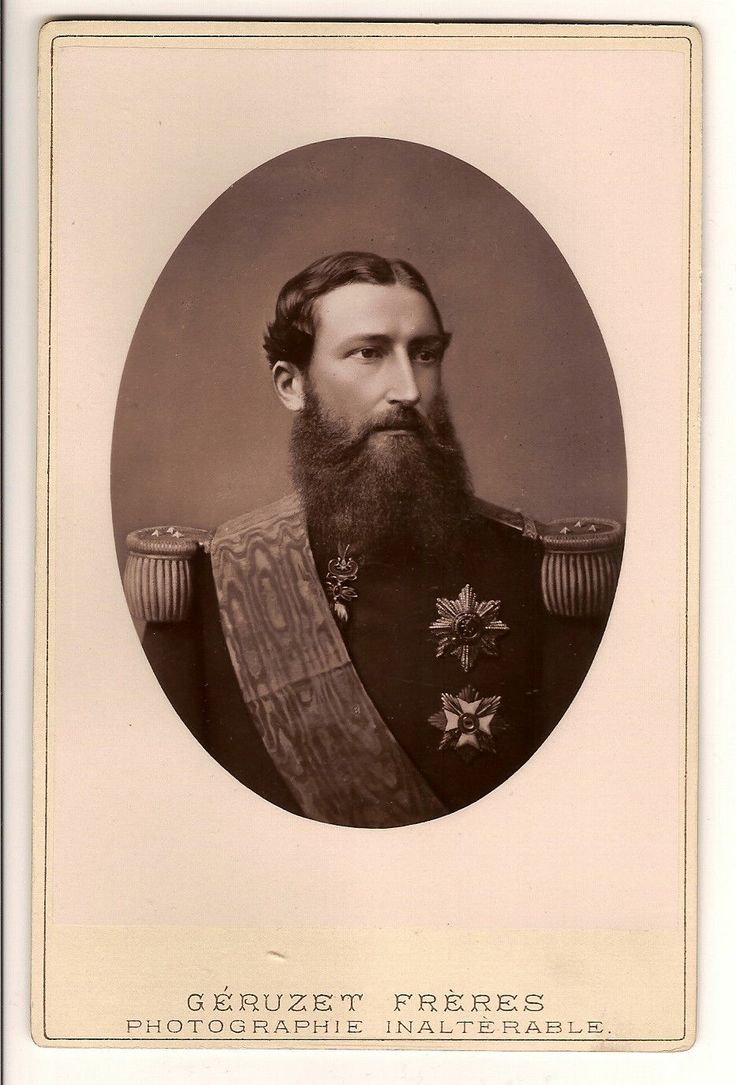 king leopold ii King leopold ii of belgium was ruthless in his pursuit of economic opportunities in africa when he established the congo free state,.