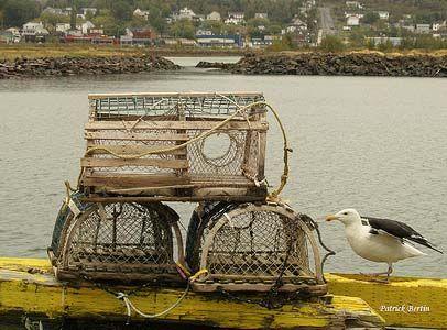 cages à homards en Gaspésie