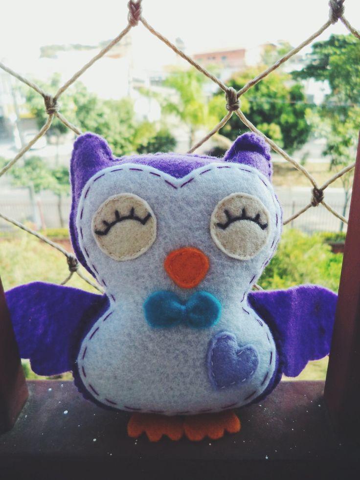 Sr. Coruja Mr. Owl
