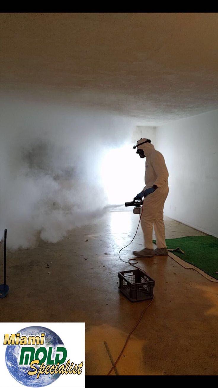 Uso de las propiedades del calor mediante el tratamiento del nebulizador térmico para erradicación  de hongo en el ambiente.