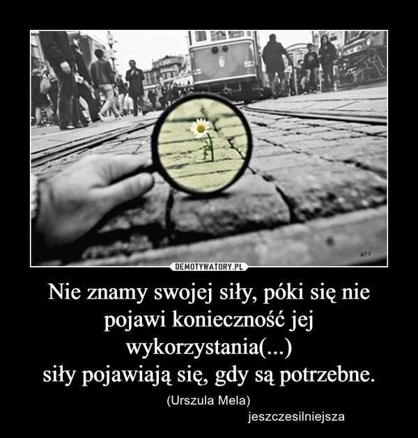 Zdjęcie użytkownika Jeszcze silniejsza.