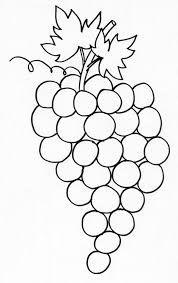"""Résultat de recherche d'images pour """"activite autour du raisin"""""""