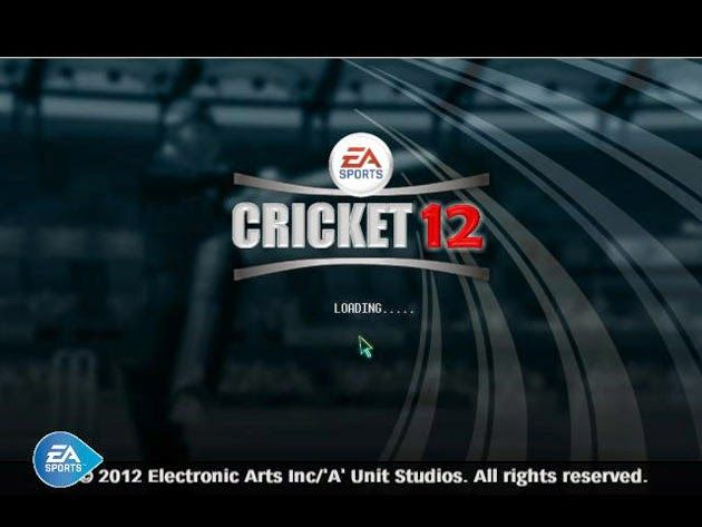 street cricket game free  for computer