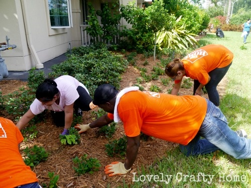 17 best images about home depot foundation celebration of for Home depot landscape design service