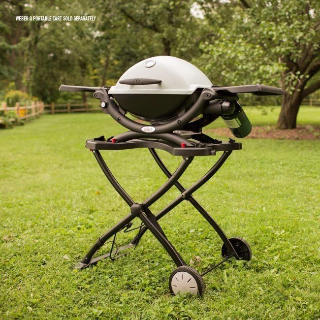 The Best Portable Grills For Picnics And Tailgating Parties Best Portable Grill Cleaning Bbq Grill Grilling