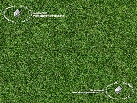 Textures Texture seamless | Green synthetic grass texture seamless 18714 | Textures - NATURE ELEMENTS - VEGETATION - Green grass | Sketchuptexture