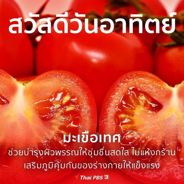 Thai Pbs ไทยพ บ เอส บน Instagram สว สด ว นอาท ตย มะเข อเทศ สว สด ยามเช า ช วยป องก นการแข งต วของหลอดเล อด ม ฤทธ ในป 2021 มะเข อเทศ สว สด ตอนเช า ว นอาท ตย