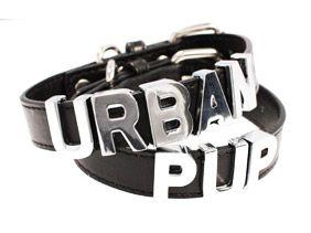 Black Leather Personalised Dog Collar (Chrome Letters)   Personalised Dog Collars at UrbanPup.com