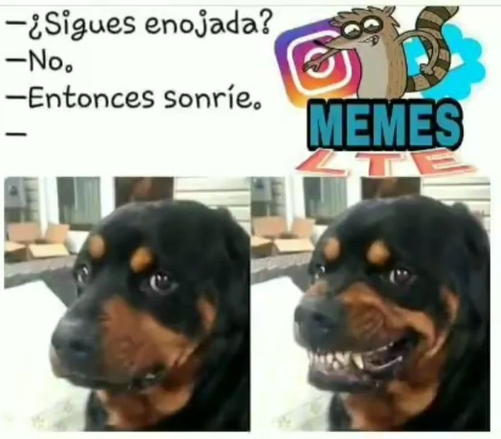 Memes Owo Nino Con Cancer Xd Memes Perros Memes Graciosos De Parejas Chistes De Parejas