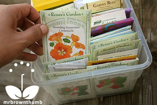 How to make a seed organizer. a plastic shoebox from the dollar store, some piec…