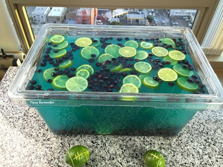 2 (1.75L) Vodka 1 (.75L) Peach Schnapps 3 (1 Gal) Polar Blast Hawaiian Punch Blueberries Blackberries Limes  Watch us make the Carolina Panthers Jungle Juice!