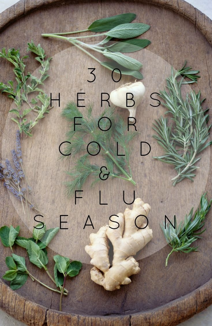 The Pinterest 100: Fitness & Health. 30 herbs for cold & flu season from…
