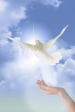 """""""Ο Θεός διακόπτει τη ζωή του ανθρώπου, όταν διαπιστώνει ότι αυτός είναι έτοιμος να περάσει στην αιωνιότητα, είτε όταν βλέπει ότι δεν υπάρχει ουδεμία ελπίδα διόρθωσης."""" (Όσιος Αμβρόσιος της Όπτινα)"""
